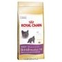 "Корм сухой Royal Canin ""British shorthair"" для британских коротк"